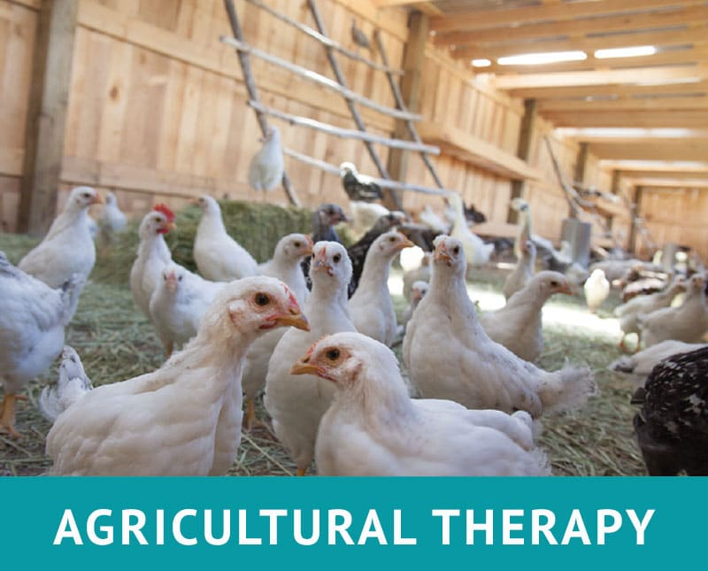 AGRICULTURAL THERAPY